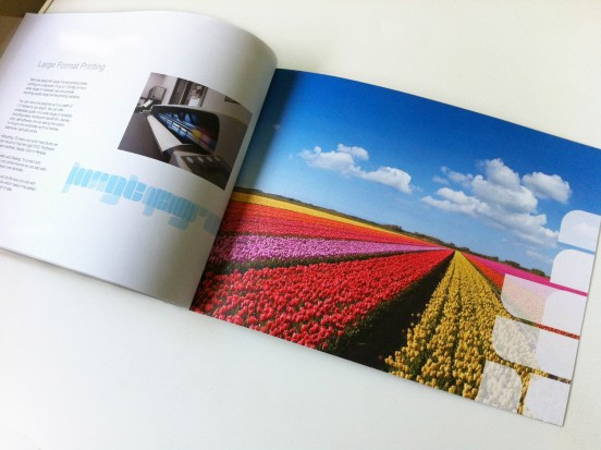 Ashwyk Brochure S6